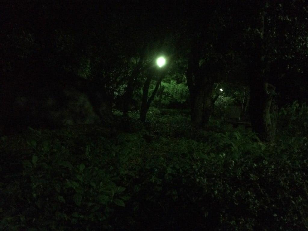 西河原公園 2014年8月30日 19:50 HDR無効 1/15sec. / F2.2 / ISO 2500