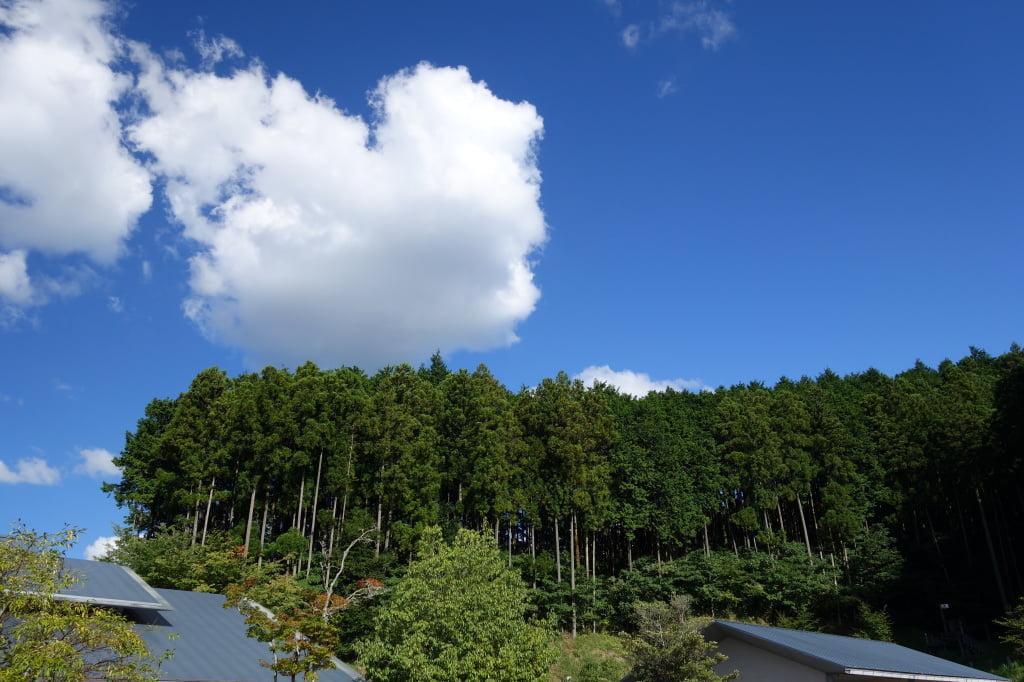 大宇陀温泉あきのの湯 2014年9月14日 15:09 1/160sec. / F5.6 / ISO 160